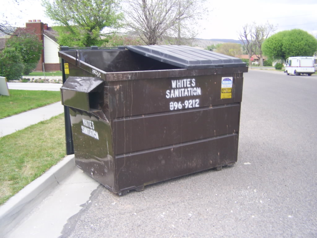 Dumpster on the Street with Whites Sanitation and phone number